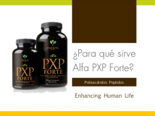 Diseño Multimedia, Alfa PXP Forte