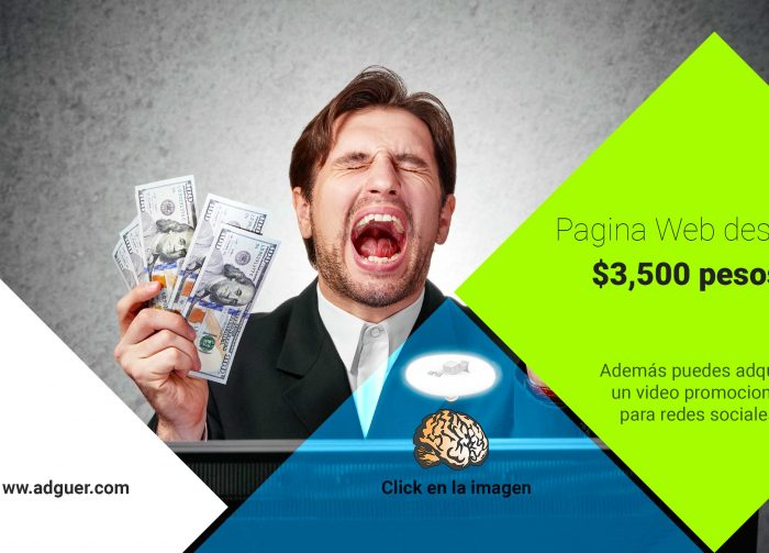 Paginas Web Monterrey + Video